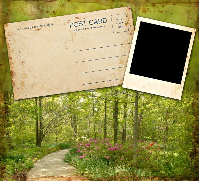 Foto y postal en blanco imagen de archivo