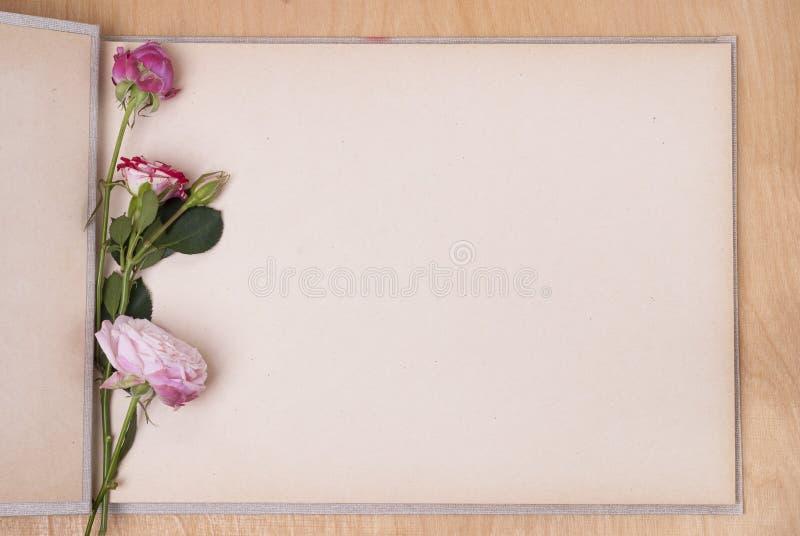 Fotoalbum och rosor royaltyfria bilder