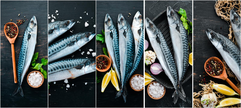 Fotocollagenfische, -makrele und -gewürze lizenzfreie stockbilder