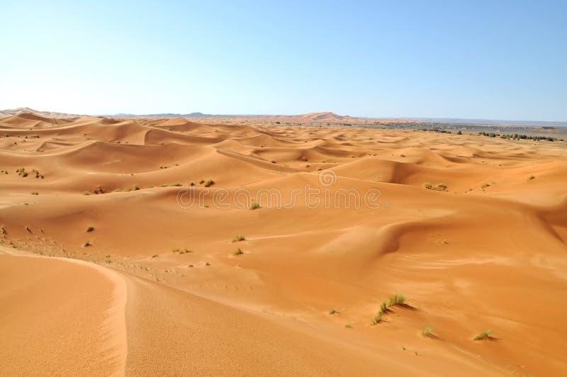 Sahara öken arkivbilder