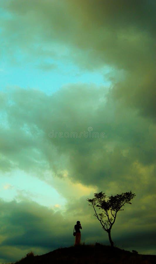 Fotograaf die een boom vangen bij zonsondergang die op binnenvrede wijzen stock afbeelding
