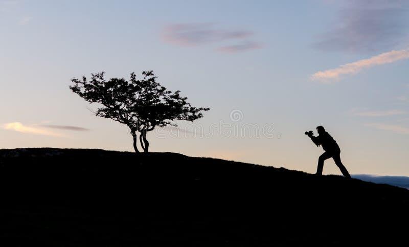 Fotograaf met camera in silhouet met boom stock afbeelding