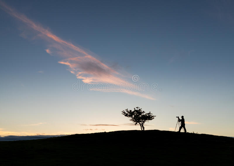 Fotograaf met driepoot in silhouet met boom stock afbeeldingen