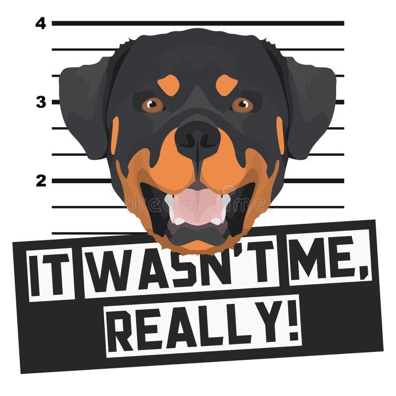 Fotograf?a de detenido Rottweiler del Mugshot libre illustration