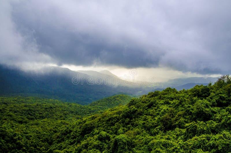 Fotografía de la naturaleza durante monzón en la India fotos de archivo libres de regalías