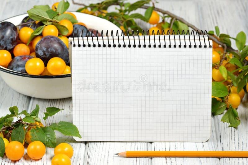 Fotografía del estudio del cuaderno encuadernado del anillo en blanco abierto rodeado por ciruelos y lápiz de las frutas frescas  foto de archivo libre de regalías