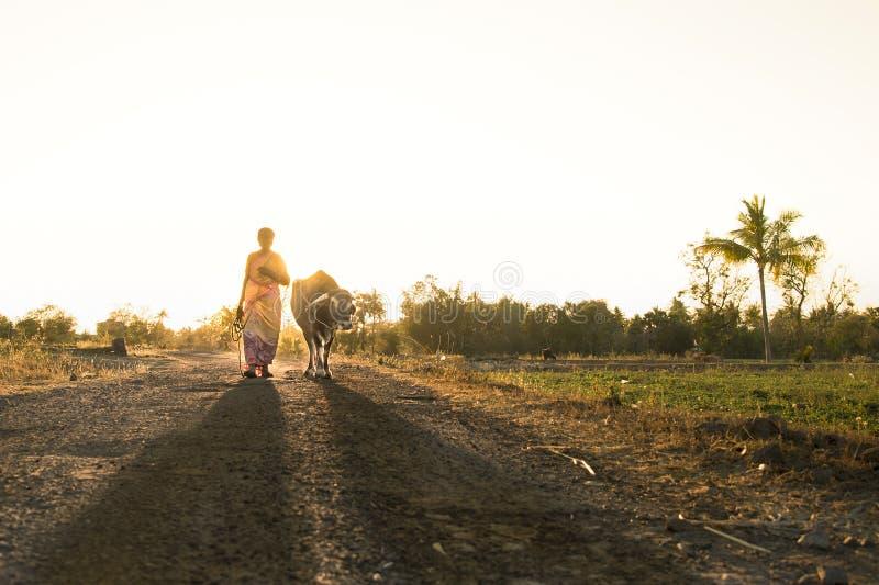 Fotografía del pueblo del nanu del tamil de la India de la fotografía de la calle de Salem foto de archivo