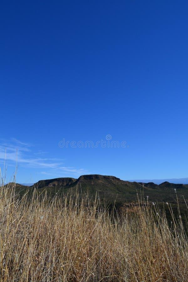 Fotografía encima de una colina en la Argentina fotografía de archivo libre de regalías