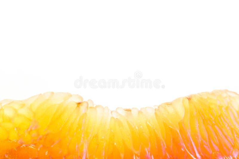 Fotografía macra de la fruta del pomelo imágenes de archivo libres de regalías