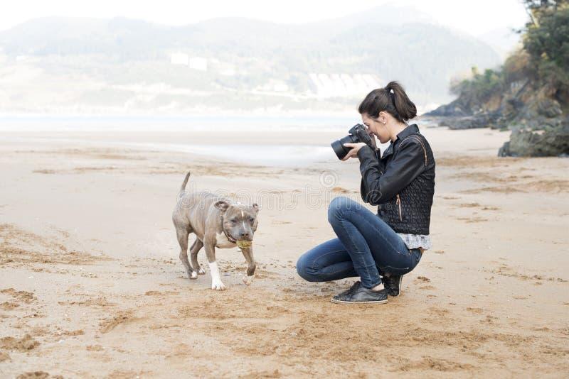 Fotograf, der die Fotos Ihres Hundes, im Freien macht. lizenzfreie stockfotografie