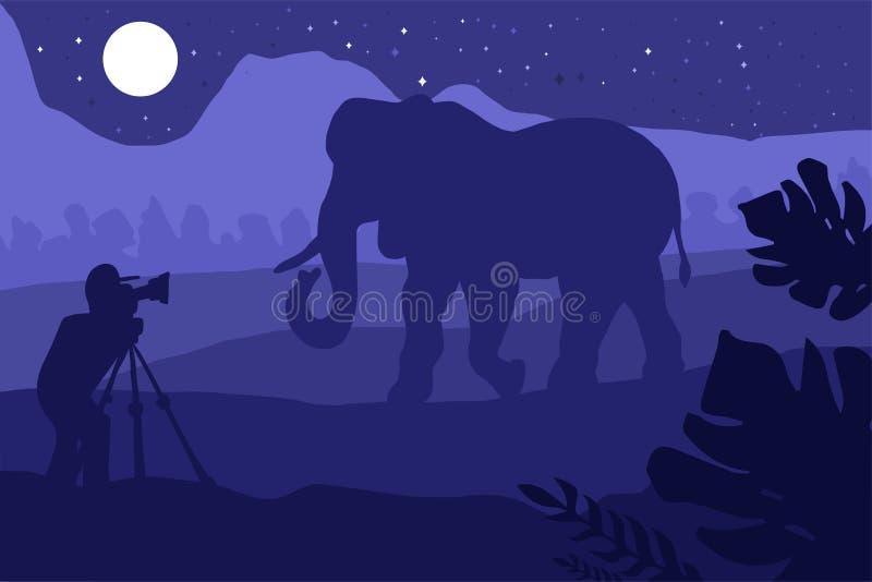 Fotograf fotografuje słonia w naturze royalty ilustracja