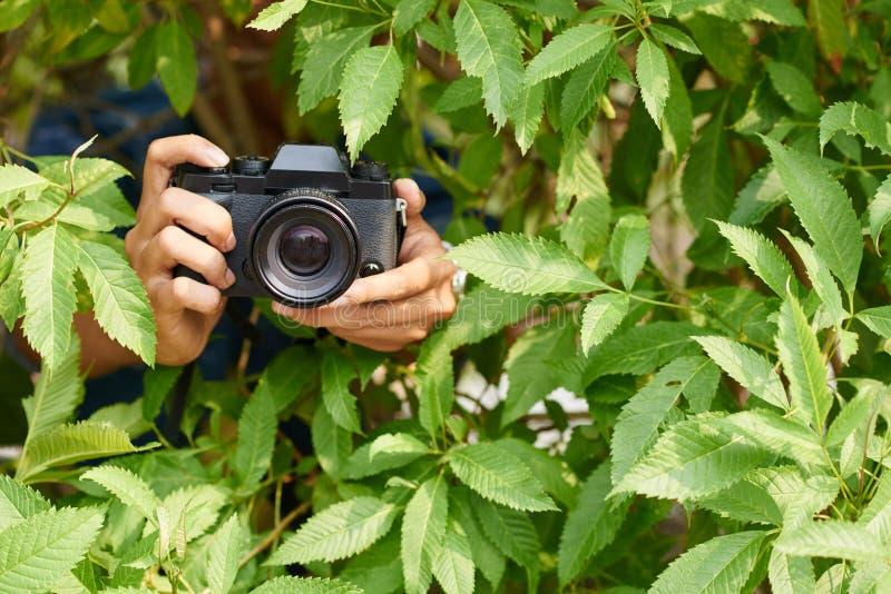 Fotograf i buskar royaltyfri foto