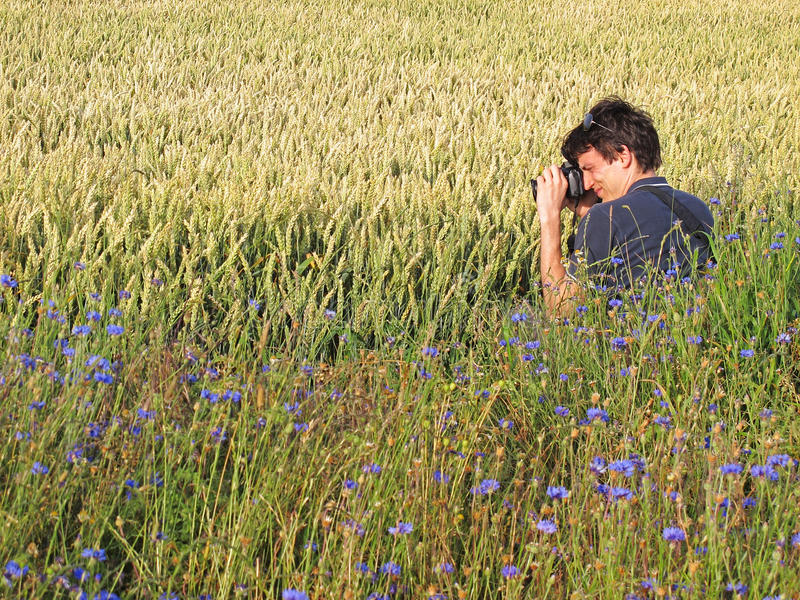 Fotograf im Getreidefeld stockbild