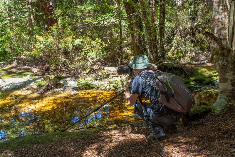 Fotograf im Wiegen-Berg Tasmanien lizenzfreies stockbild