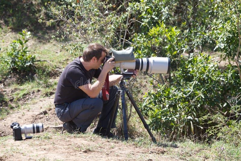 fotograf przyroda zdjęcie royalty free