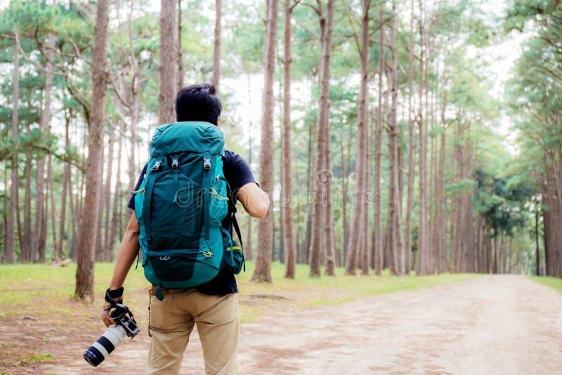 Fotograf z podróżować przy sosna parkiem fotografia royalty free