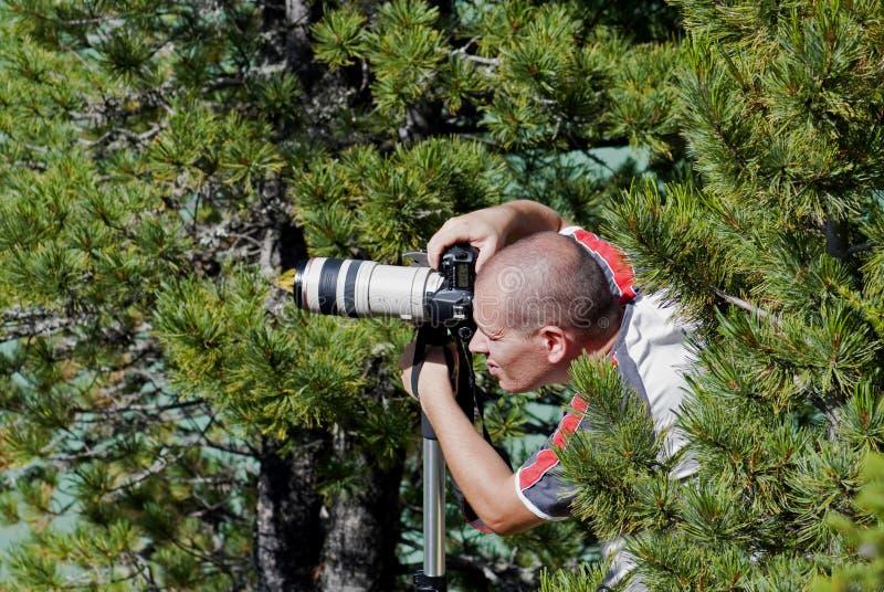 fotografa profesjonalista obraz royalty free