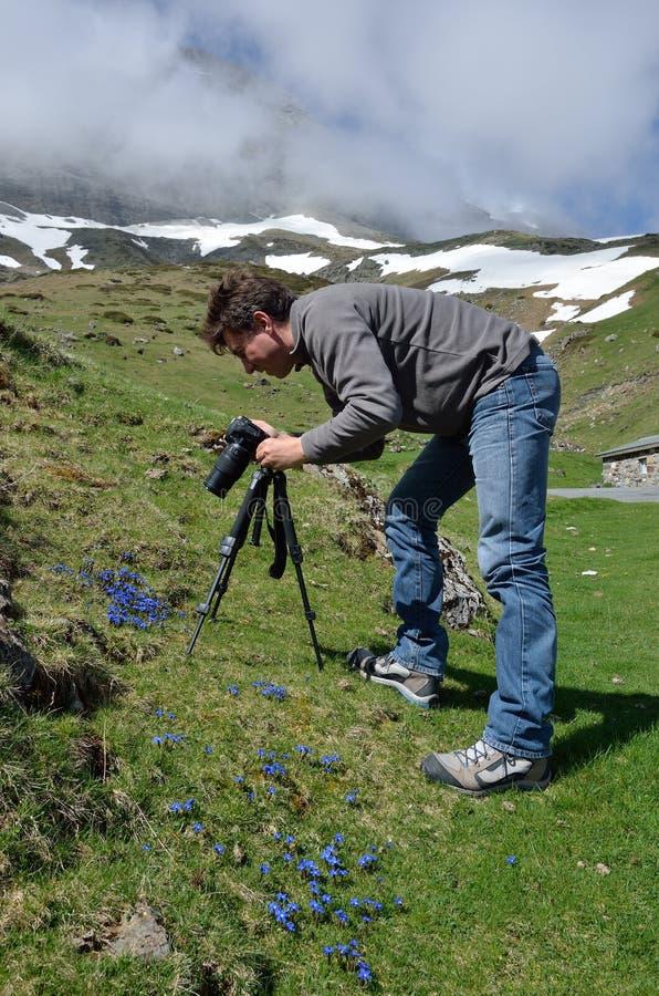 Fotografare in primavera Pirenei immagine stock libera da diritti