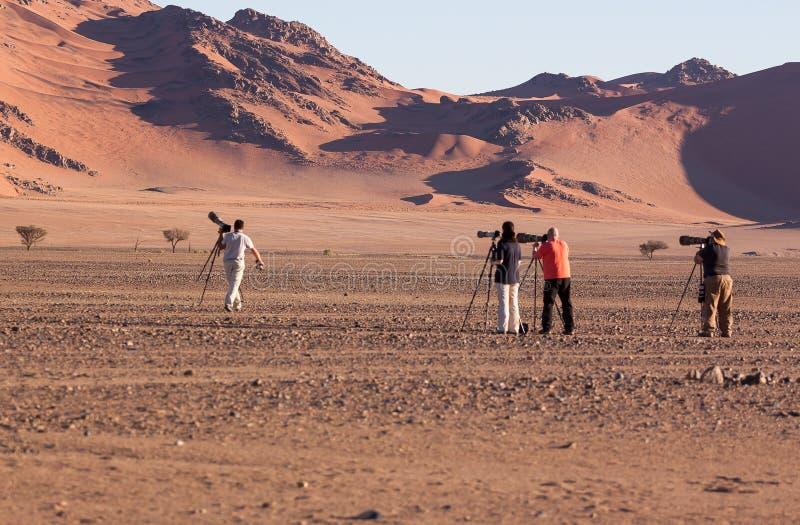 Fotografer som ställer upp det perfekta skottet av dyn 45, sossusvlei, Namibia i juli 2015 arkivfoto
