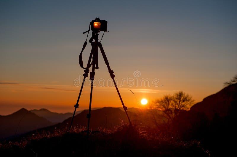 fotografera royaltyfri foto