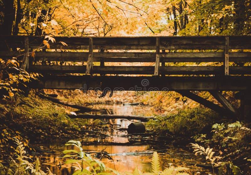 Fotografi av en bro över en liten flod arkivfoto