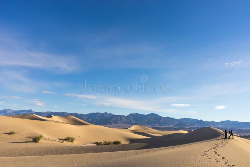 Fotografi för sanddyn arkivbild