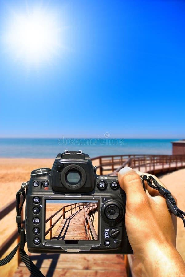 Fotografi l'estate immagine stock