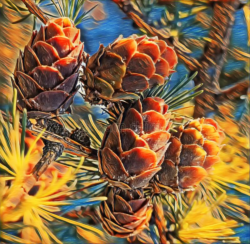 Fotografia artística de cones verdes em larch tree branch sob luz solar no distrito de Vladimir foto de stock