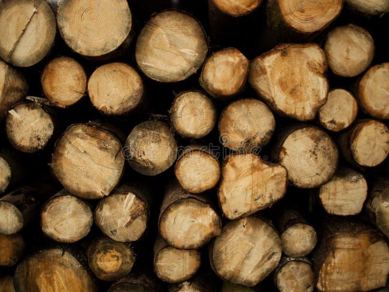 Fotografia bele pożarniczy drewno zdjęcie stock
