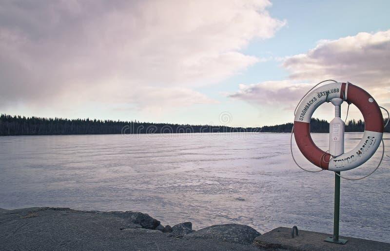 Fotografia bonita do específico do inverno/outono Vegetação junto com o ambiente do fuzileiro naval/água Grandes luzes e cores St imagem de stock