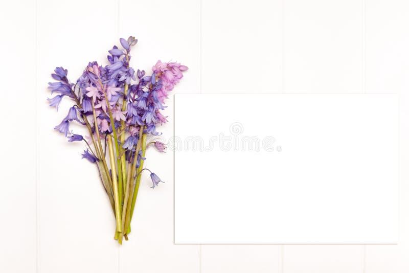 Fotografia conservada em estoque denominada imagem de stock