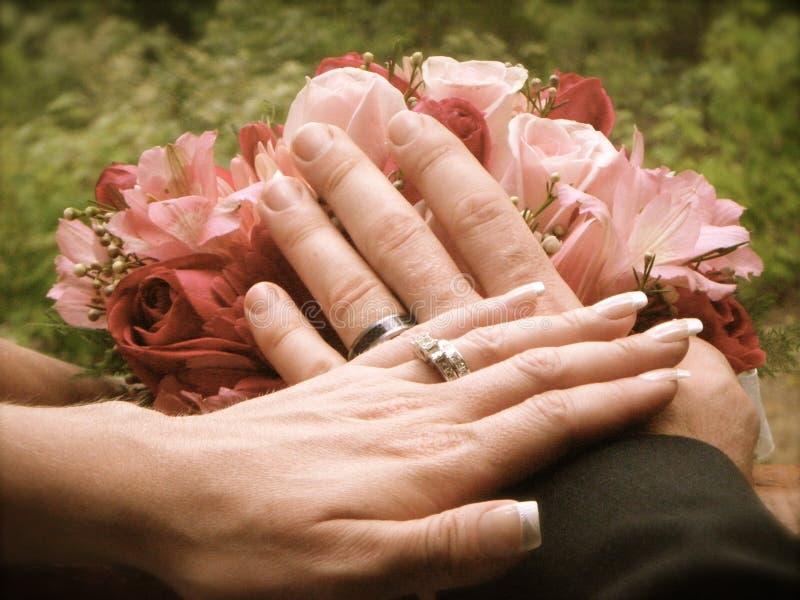 Fotografia conservada em estoque do casamento fotos de stock