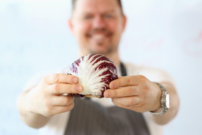 Fotografia cruda del cavolo di Hands Holding Fresh del cuoco unico fotografie stock libere da diritti