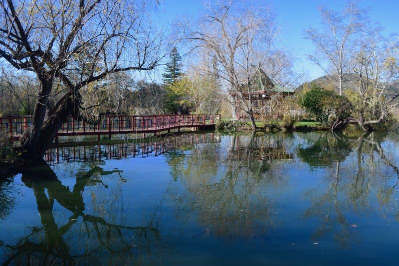 Fotografia da reflexão da paisagem em Napa Valley fotografia de stock royalty free