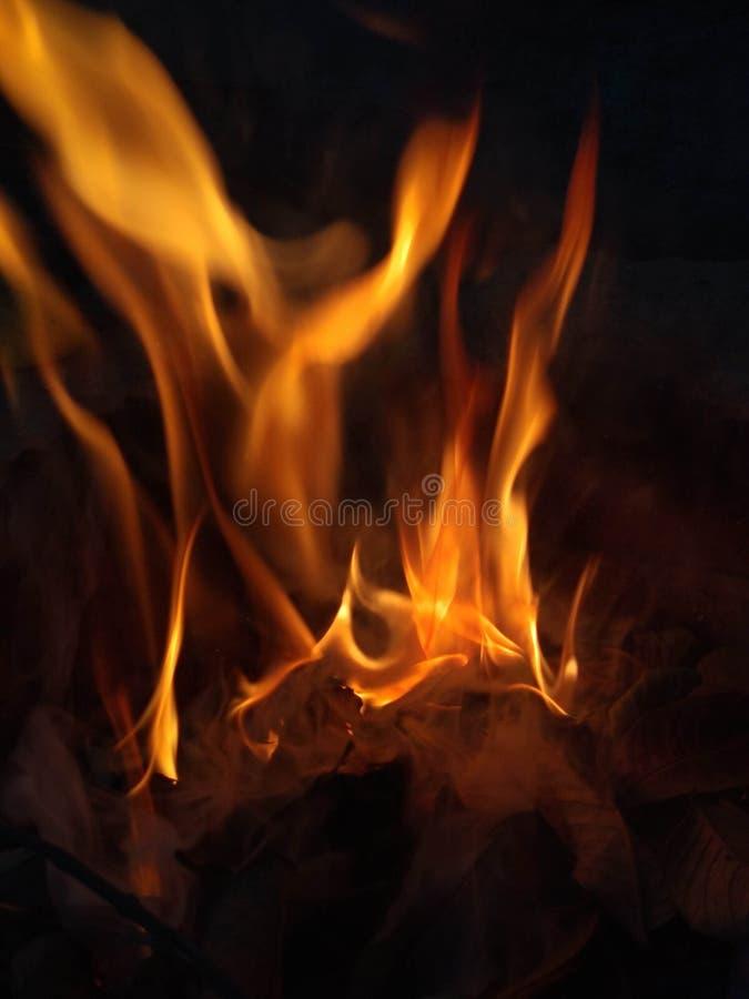Fotografia del fuoco fotografia stock libera da diritti