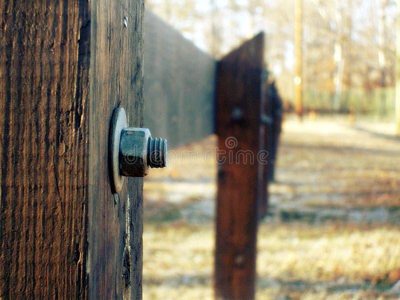 Fotografia del fuoco selettivo di Grey Bolt Pierced in recinto di legno di Brown durante il giorno immagine stock
