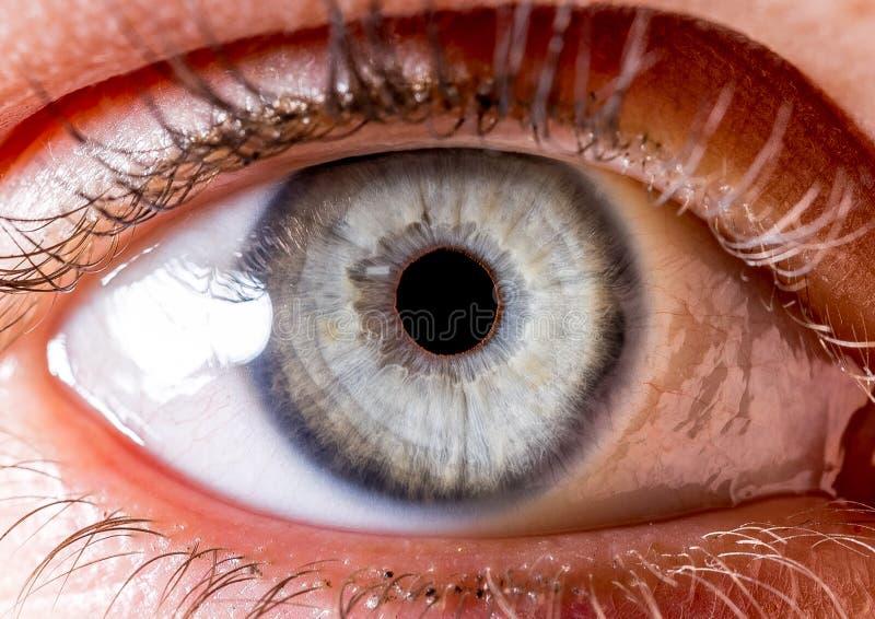 Fotografia dell'iride Macro colpo vicino di un bulbo oculare blu-chiaro con il piccolo cratere fotografia stock