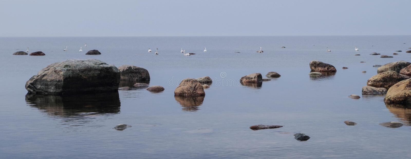 Fotografia di Brown Rocks vicino al corpo dell'acqua di giorno immagine stock libera da diritti