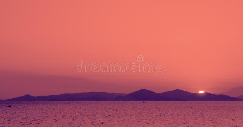 Fotografia di tendenza sul tema del colore dell'anno Panton 2019 - corallo vivente E immagine stock libera da diritti