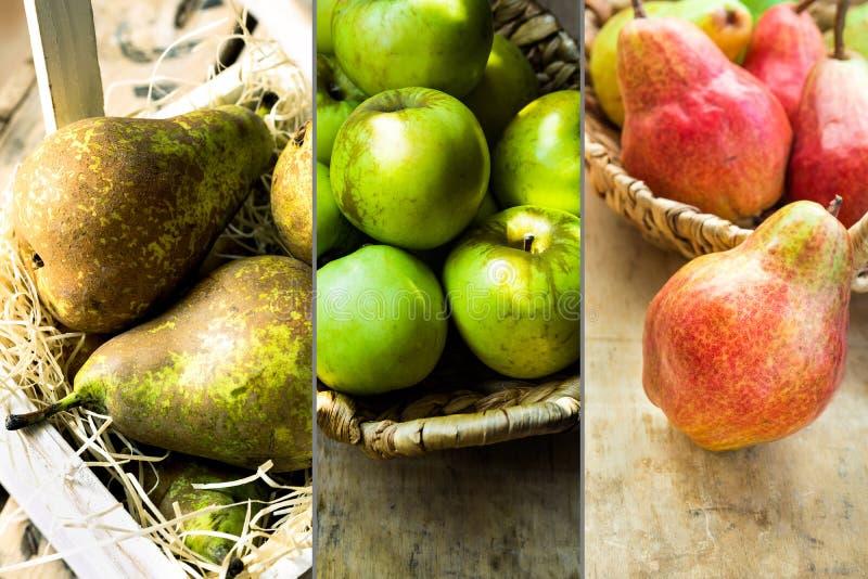 Fotografia kolażu jesieni owoc, czerwonych i brown bonkrety sezonowe, zieleni organicznie jabłka w łozinowym koszu, uprawia ziemi zdjęcie royalty free