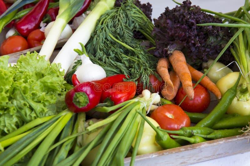 Fotografia komercyjna koszyka pełnego warzyw obrazy stock