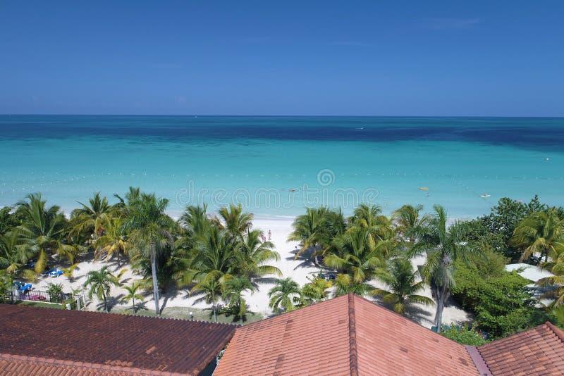 Fotografia od kurortu Charela austerii Negril Jamajka zdjęcie royalty free