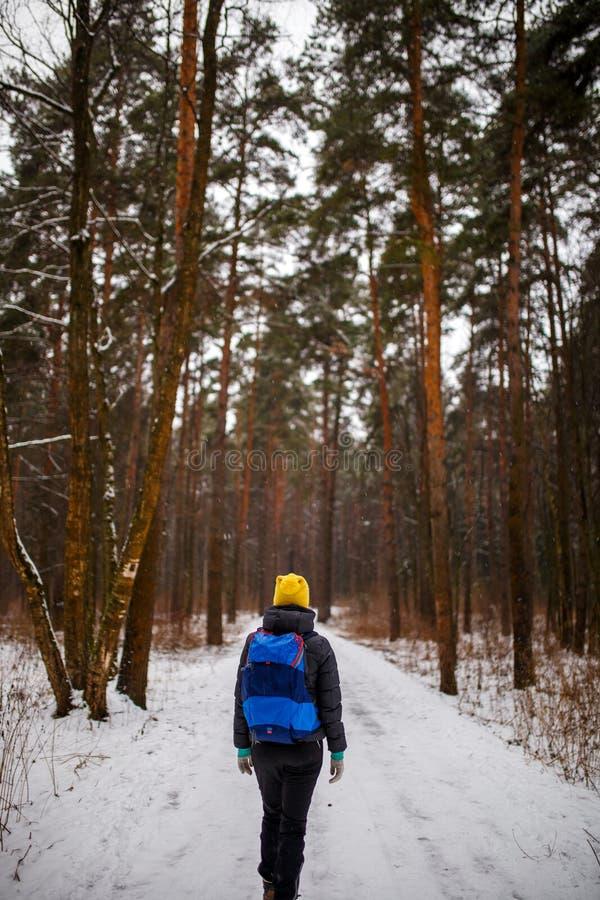 Fotografia od plecy chodząca kobieta z plecakiem nad zima lasem obrazy royalty free