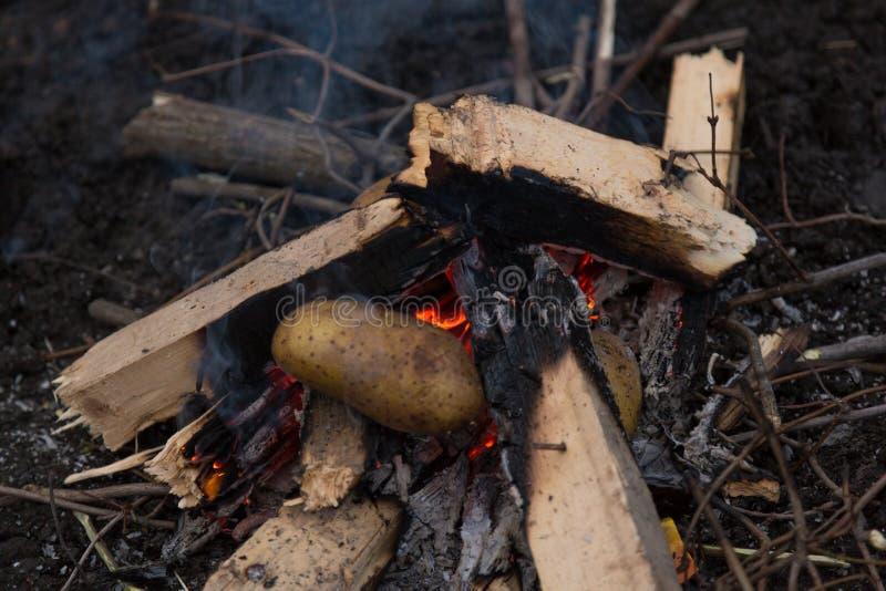 Download Fotografia ognisko zdjęcie stock. Obraz złożonej z ilustracje - 106917524