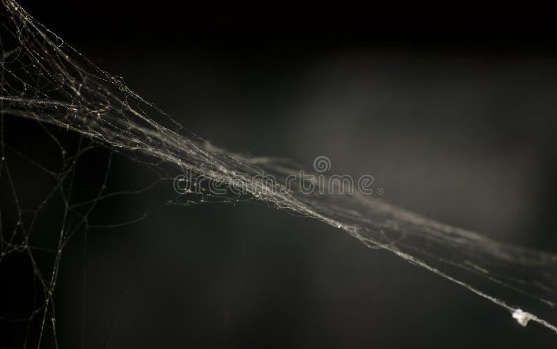 Fotografia sieć w zmroku tonuje dla tła makro- obrazy stock