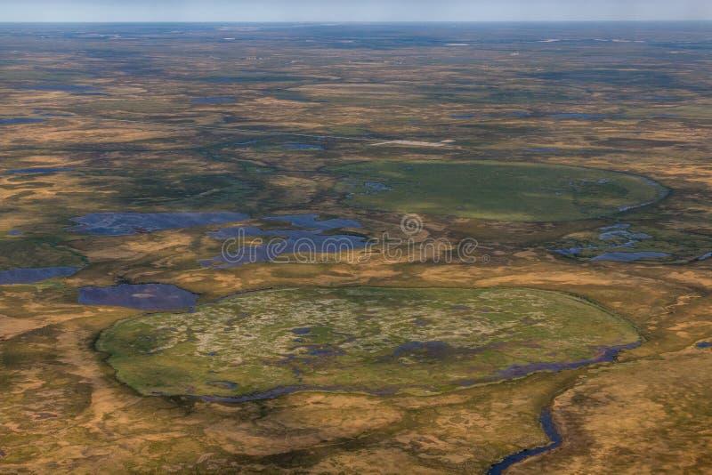 Fotografia tundra od above obrazy royalty free