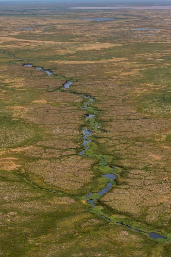 Fotografia tundra od above zdjęcie royalty free