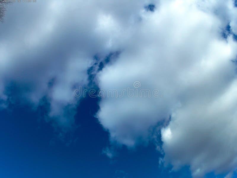 Fotografia, wiosna, Marzec niebo, chmury, gałąź obraz royalty free