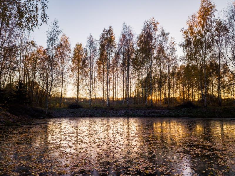 Fotografia zamarznięty jezioro w jesień dniu fotografia stock