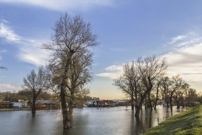 Fotografie des überschwemmten Landes mit sich hin- und herbewegenden Häusern bei Sava River - lizenzfreie stockfotos